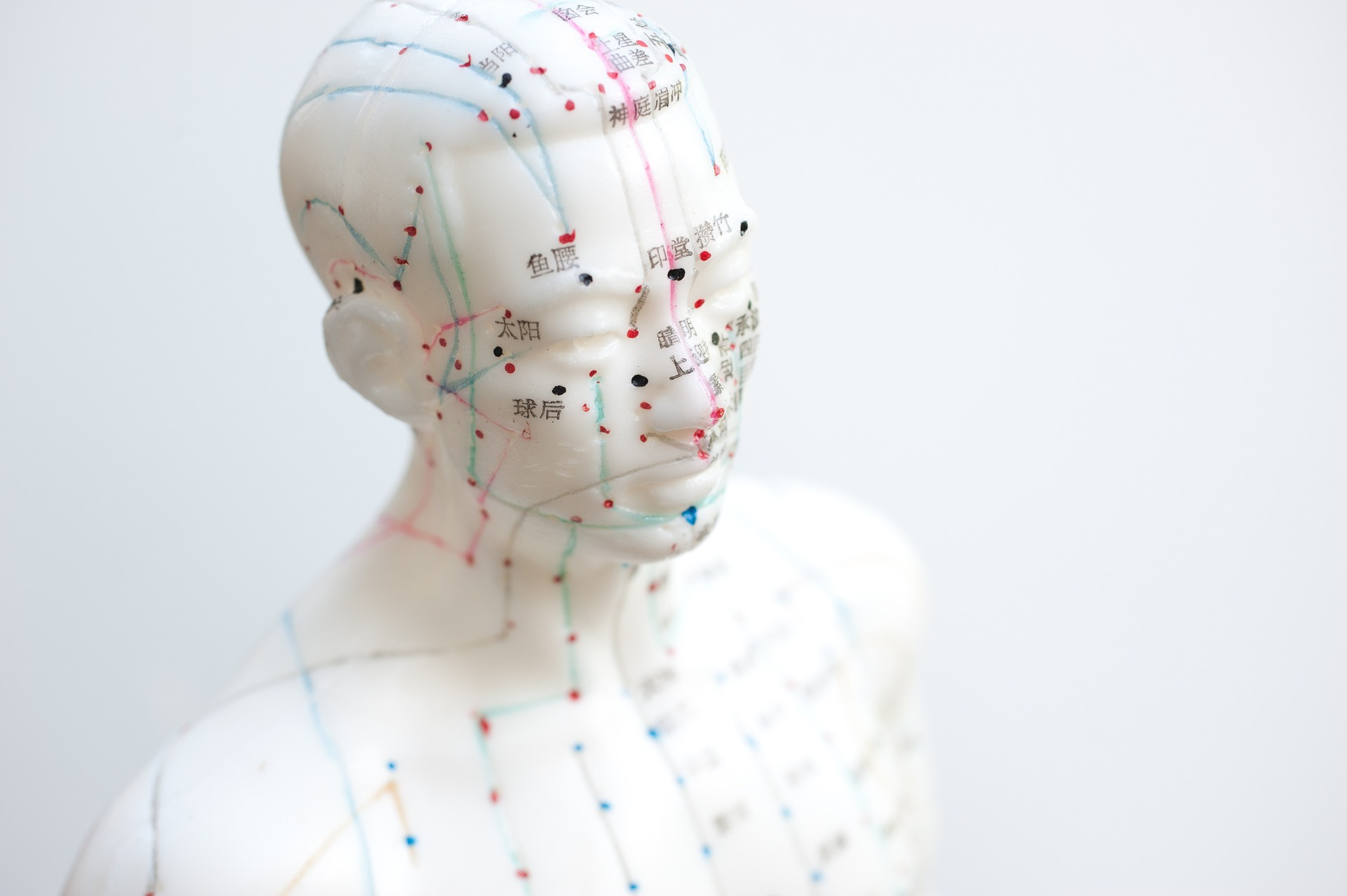 How I became an Acupuncturist