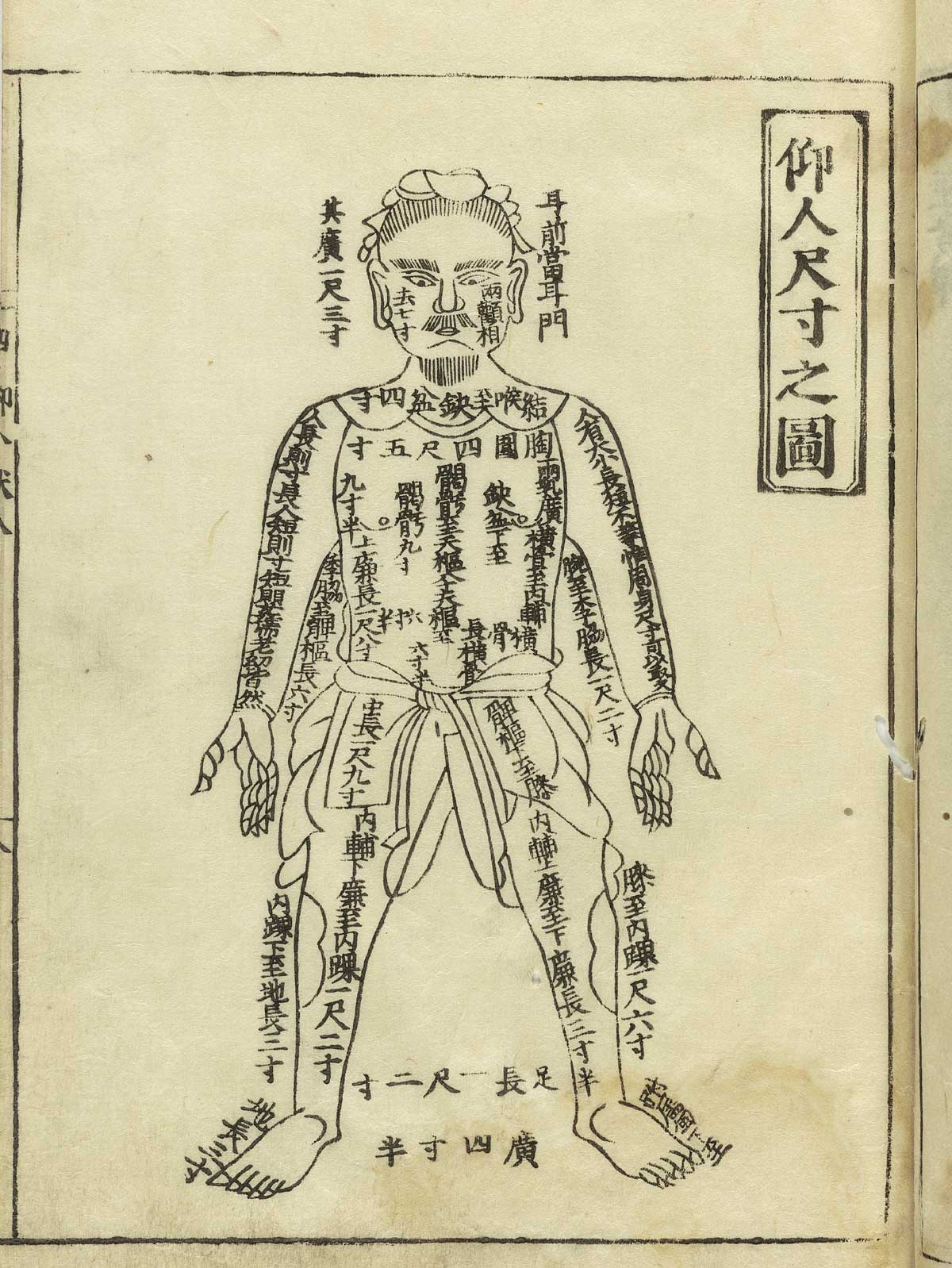 Ancient Acupuncture Image Natures Healing