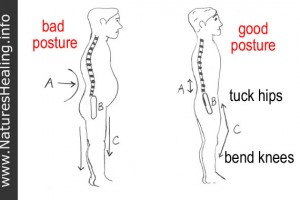 posture-low-back-pain