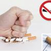 smokeout - quit smoking