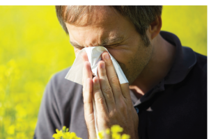 How Acupuncture Safely Helps Allergies and Asthma – Nature's Healing News
