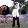 4 seasons chi kung