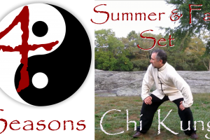 4 Seasons Chi Kung Online - Summer and Fall Set