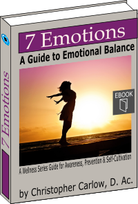 7 Emotions - A Guide to Emotional balance