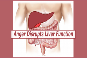 Discover How The Explosive Energy Pattern of Anger Disrupts Liver Function