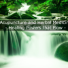 acupuncture and herbal medicine - let it flow
