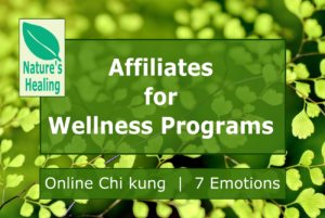 Affiliates for Wellness Programs