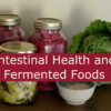 fermented foods and intestinal health