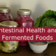 Intestinal Health and Fermented Foods