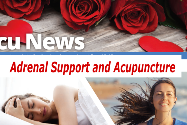 Adrenal Support and Acupuncture and Herbal Medicine