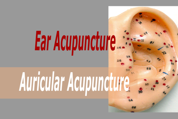 Ear Acupuncture - Acupuncture and Herbal Medicine